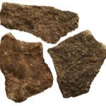Αγκωνάρι πέτρα Σεζόλ